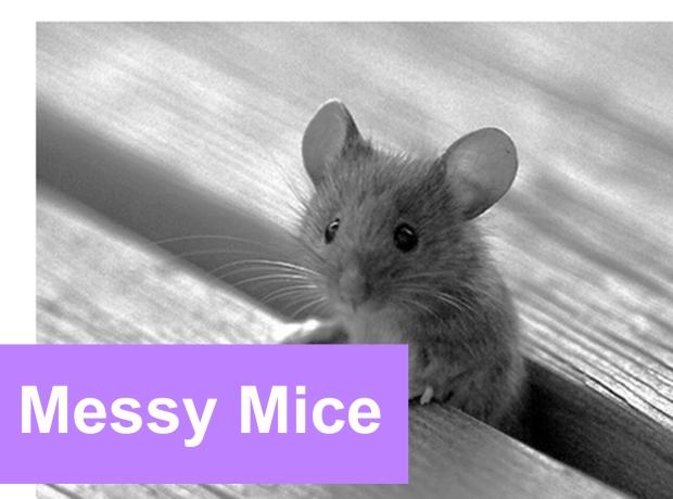 messy mice lg